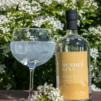 DUNDEE GIN OLD TOM HONEY & SPICE 43% 70CL